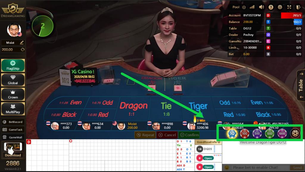 Dragon Tiger Dream Gaming Bet Amount