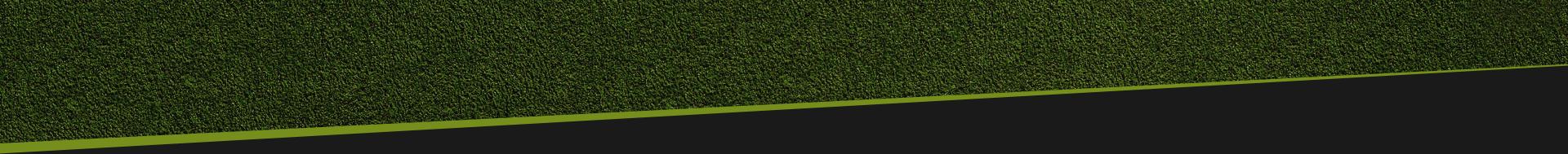 bot grass v2 Betvision88